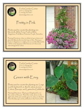 Container Garden Recipes Des Moines