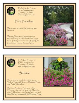 Container Garden Recipes with Pink Flowers