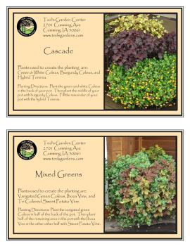 Leafy Full Container Garden Recipes