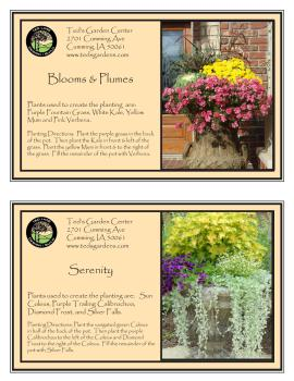 Beautiful Containe Garden Recipes Purple, Pink, Yellow and White Flowers