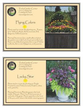 Colorful Container Garden Recipes