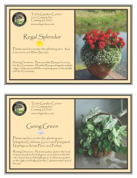 Container Garden Recipes Regal Splendor and Going Green