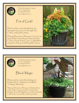 Pot of Gold and Black Magic Container Garden Recipes Ted Lare