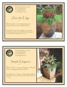 Ted Lare Des Moines Container Garden Recipes