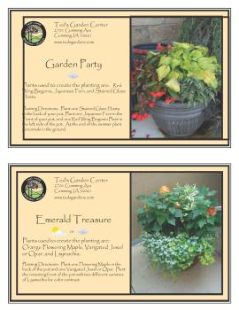 Container Garden Recipe Leafy Plants