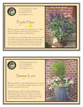Container Garden Recipes Shades of Purple Flowers