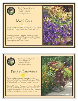 Container Garden Recipes Bright Flowers