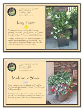 Container Garden Recipes Ivory Tower and Made in The Shade