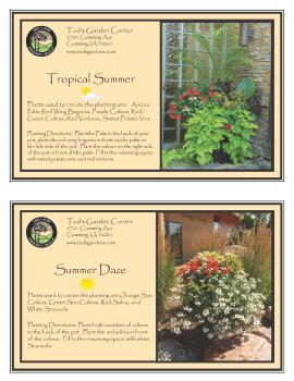 Container Garden Recipes Tropical Summer and Summer Daze
