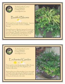 Container Garden Recipes Bashful Blooms and Enchanted Garden