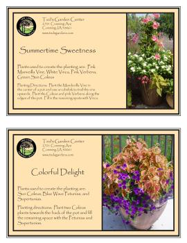 Purple, Pink, and White Flower Container Garden Recipes