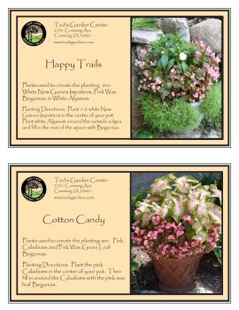 Container Garden Recipes Small Pink Flowers