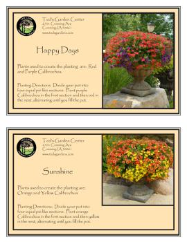 Bright Flowers Container Garden Recipes