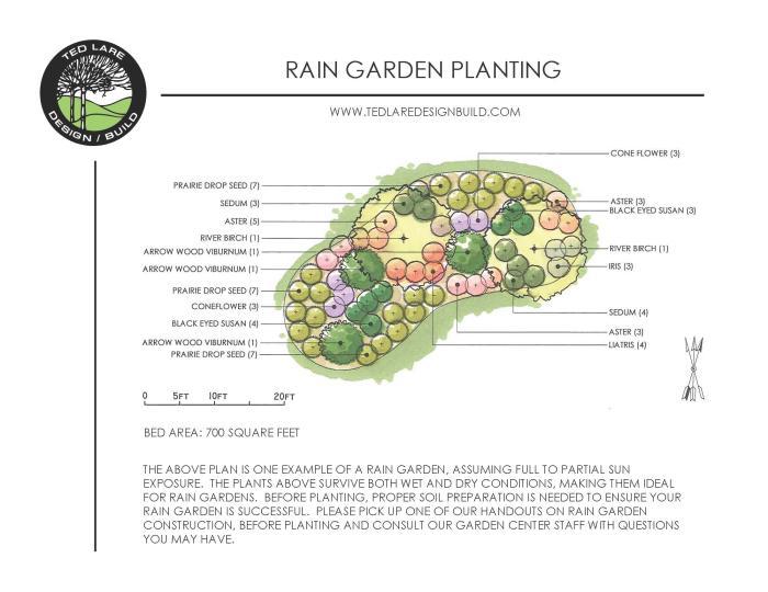 Rain Garden Planting Landscape Design Ted Lare Des Moines