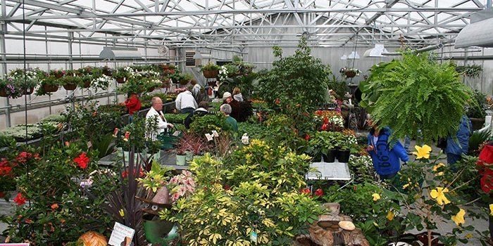 Ted Lare Garden Centre Greenhouse