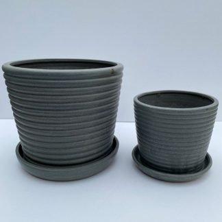 Ringlet Petit Pot