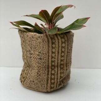 Cozumel Potting Bag