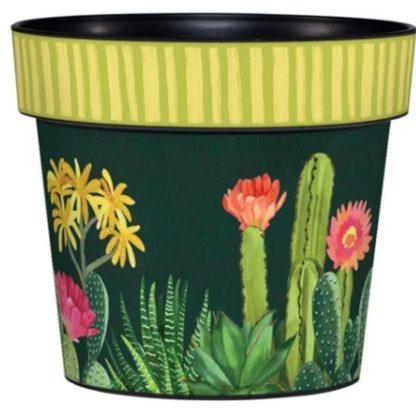 Art Pot Night Cactus