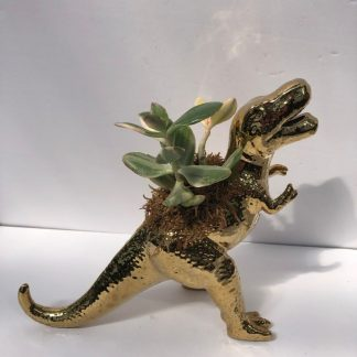 Customer planter Dinosaur