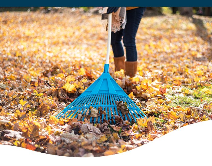 Fall lawn care landscape tips for Central Iowa at Ted Lare