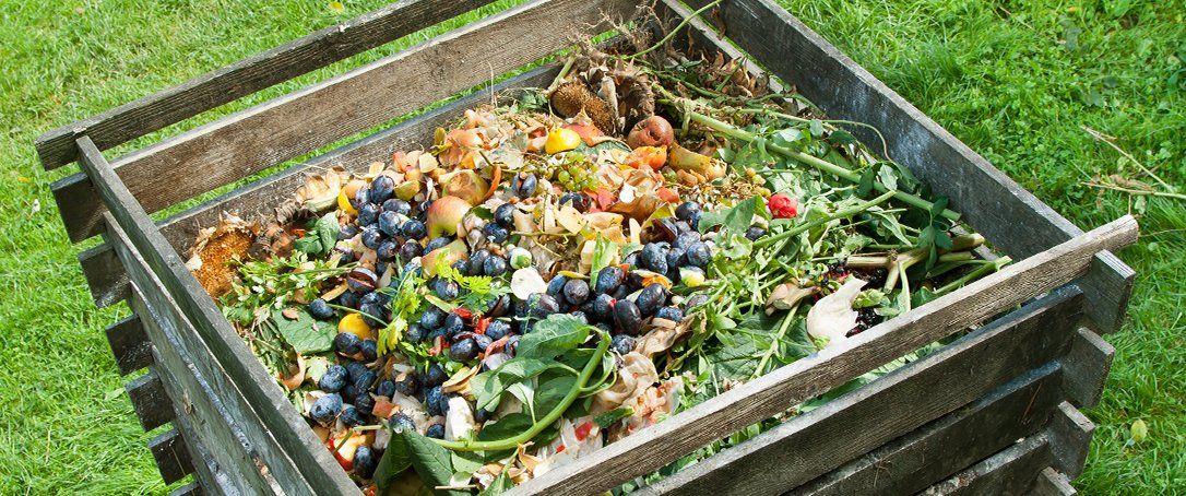 keep leaves for compost Ted Lare