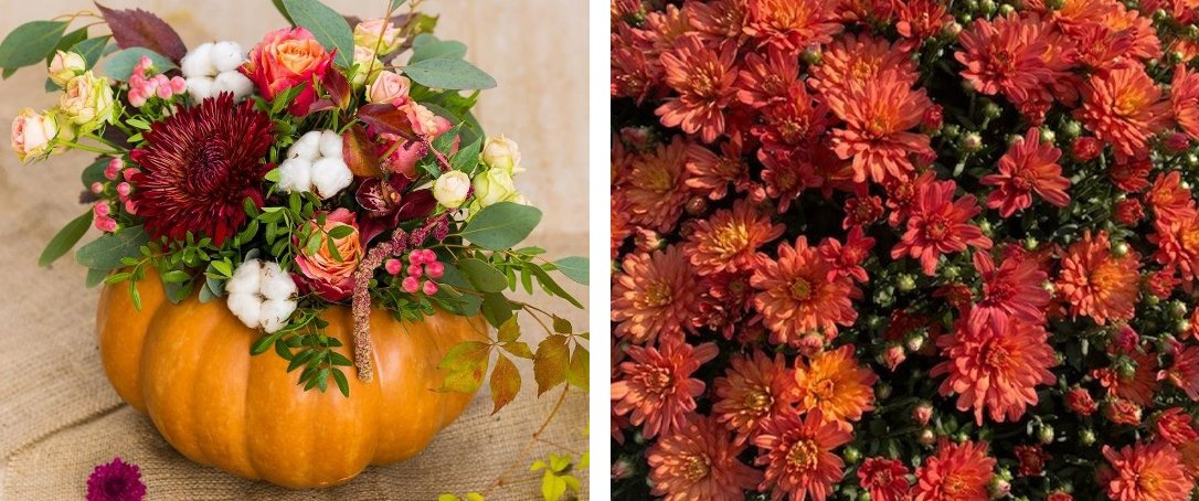 centerpiece inspiration fall decor Ted Lare