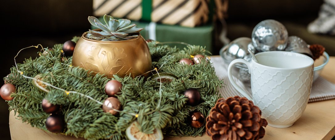 holiday planters festive pots Ted Lare