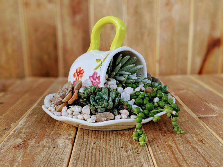 Teacup Planter Workshop 06/26/21 1pm