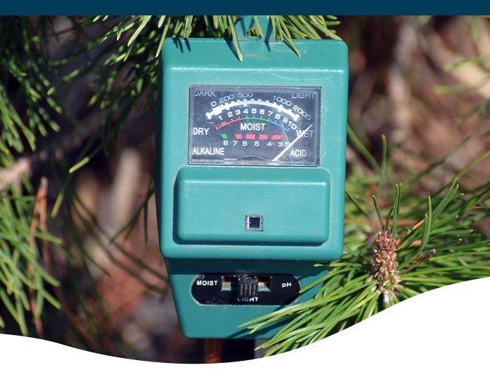 soil meter in a garden