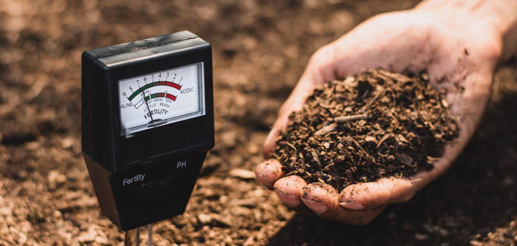pH testing of garden soil