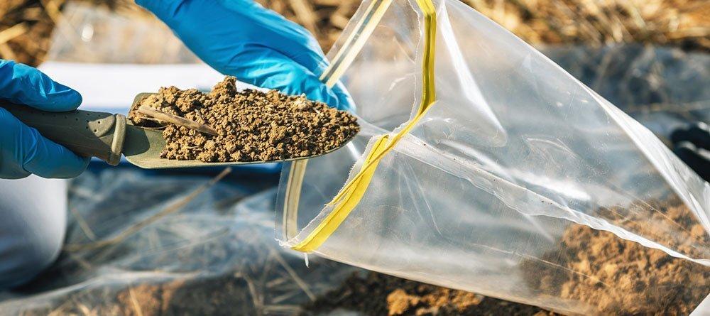 soil sample from garden in bag