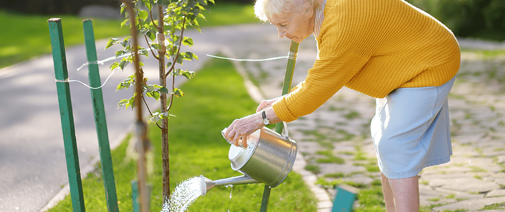 woman watering tree ted lare design & build