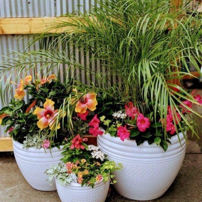 Bright 'N' Cheery Summer Planter 06/06/21 1pm