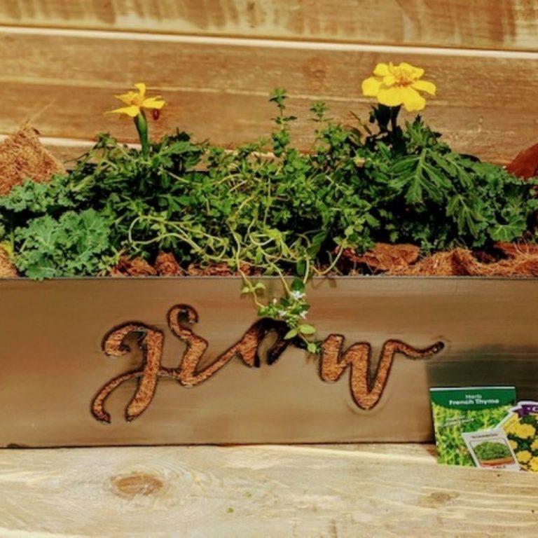 Grow Snack Planter 06/05/21 10am