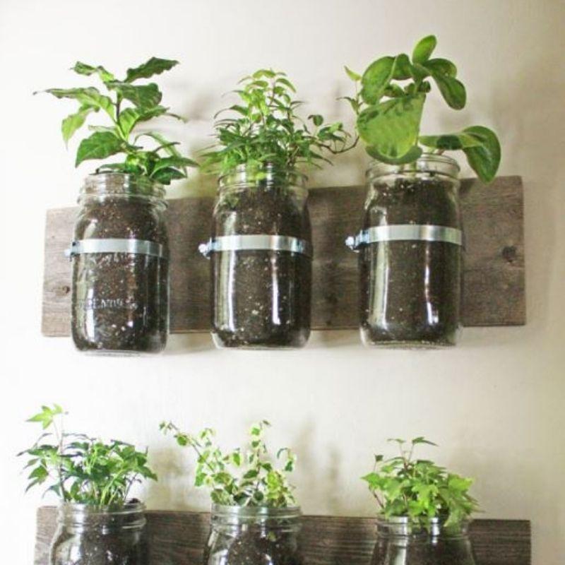 Mason Jar Houseplanter