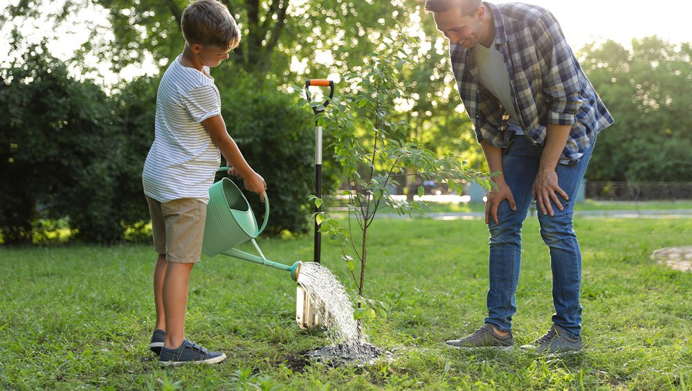 father and son watering newly planted tree ted lare design & build