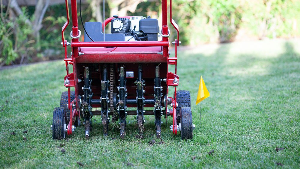 lawn aerator ted lare design & build