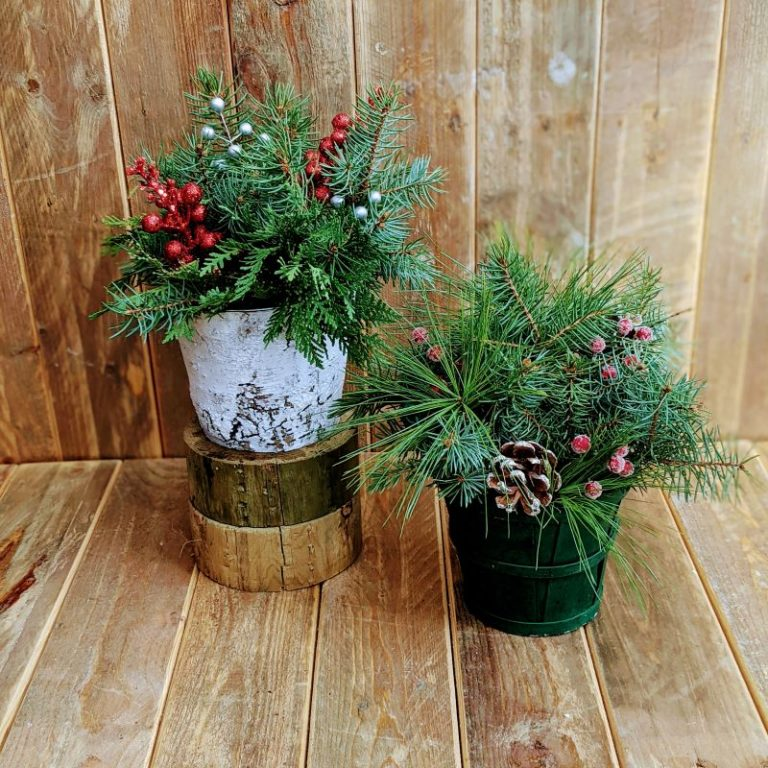 Ladies Night Out Mini Tabletop Evergreen Basket 11/18/21